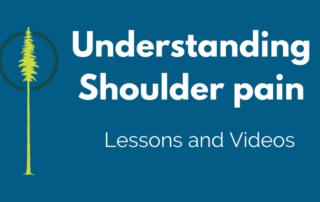 Rehab shoulder pain
