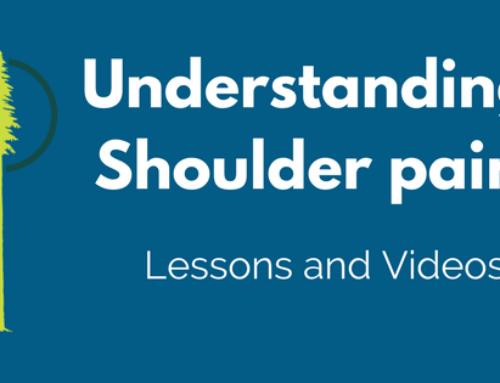 Lessons on shoulder pain
